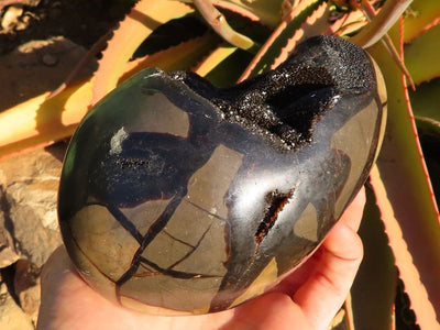 Polished Septeyre Dragons Eggs x 2 from Mahaganja, Madagascar