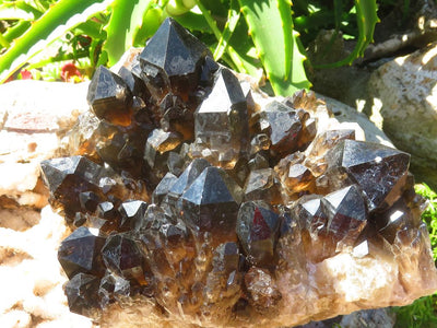 Natural Pitch Black XL Cascading Smokey Citrine Cluster x 1  from Lwena, Congo