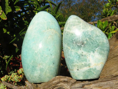 Polished Amazonite Standing Freeforms x 2 from Madagascar