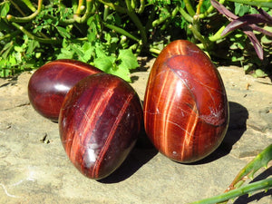 Polished NEW Red Tigers Eye Eggs x 6 from South Africa