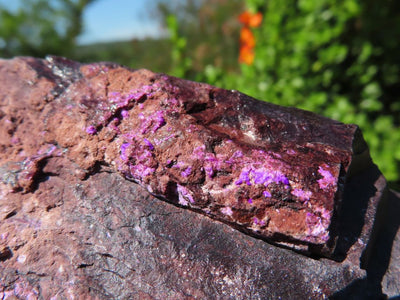 Natural Semi Crystalline Sugilite on Ferromanganese Specimen x 1 from Wessels Mine, Northern Cape