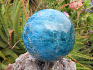 Polished Blue Apatite Crystal Ball x 1 from Madagascar