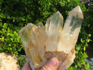 Natural Large NEW Clear Quartz Clusters x 2 from Zimbabwe