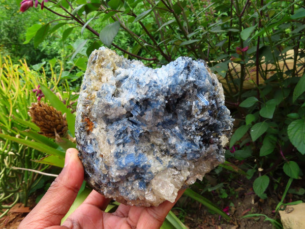 Natural Small to Large Blue Kyanite In Quartz With Pyrope Garnet Specimens x 3 From Karoi, Zimbabwe