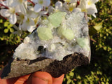 Natural Prehnite Specimens x 7 from Namibia