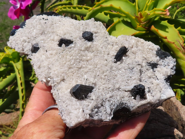 Natural Large Schorl Black Tourmaline In Feldspar & Foitite In Quartz Crystal Clusters x 3 from Erongo, Namibia