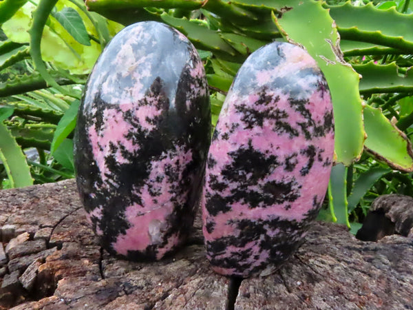 Polished Medium Rhodonite Standing Free Forms x 2 from Madagascar