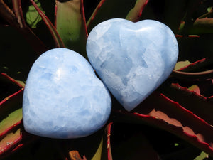Polished Blue Calcite Hearts x 12