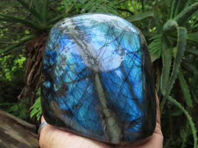 Polished Labradorite Standing Freeform x 1 from Madagascar