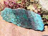 Polished Cuprite Malachite & Shattuckite Slices x 12 from Congo