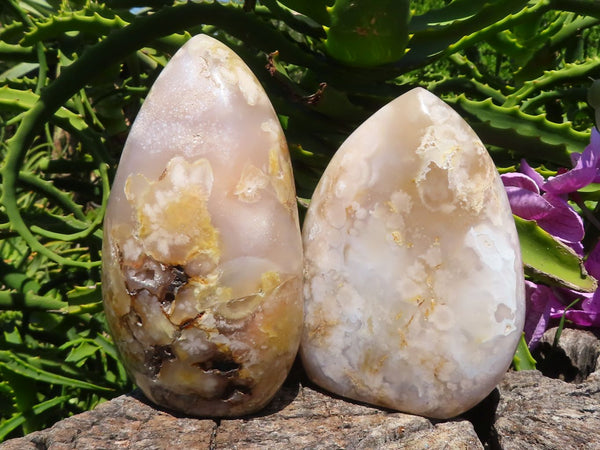 Polished Medium Coral Flower Agate Standing Free Forms x 2 from Mainterano, Madagascar