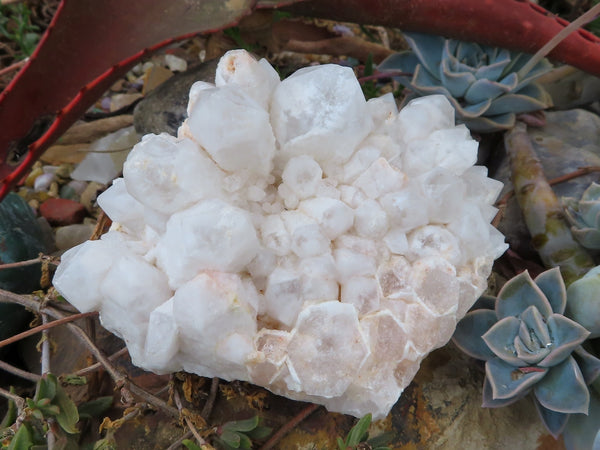 Natural Large White Quartz Clusters x 3 from Madagascar