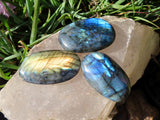 Polished Flat Palm Labradorite Gallets x 12 from Madagascar