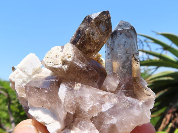 Natural Large Aegerine Smokey Quartz & Orthoclase Crystals x 6 from Zomba, Malawi