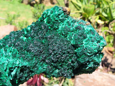 Natural XL Silky Malachite Cabinet Specimens x 2 from Kasompe, Congo