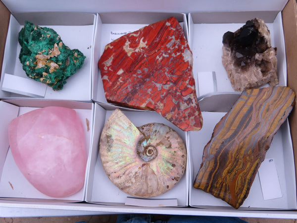 Natural/ Polished  Large Mixed Labelled Specimens x 6 From Southern Africa