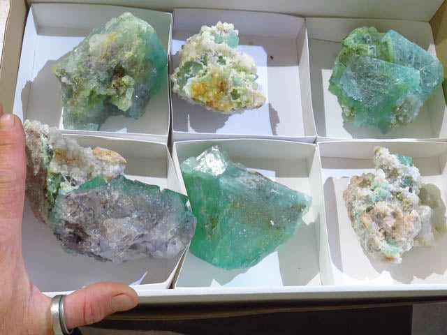 Natural Large Octahedron Fluorite Specimens x 6 from Northern Cape, South Africa