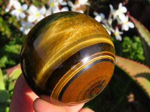 Polished Variegated Blue & Gold Tigers Eye Crystal Balls x 6 from Prieska, South Africa