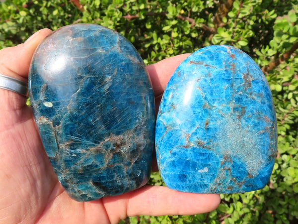 Polished Medium Blue Apatite Standing Free Forms x 2 from Madagascar