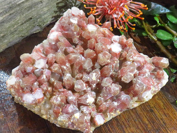 Natural Red Hematite Quartz Cluster x 1  from Pella, South Africa - TopRock