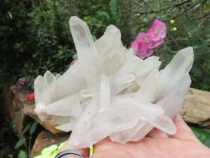 Natural Quartz Crystal Clusters x 4 from Madagascar