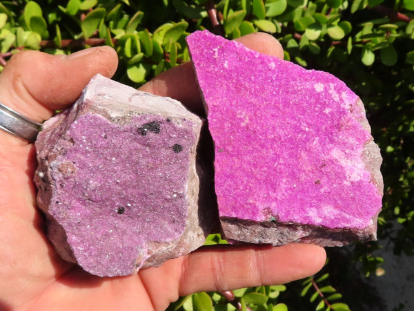 Natural Large Salrose Cobaltion Dolomite Specimens x 12 from Kakanda, Congo
