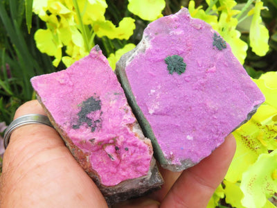 Natural Selected Salrose Specimens x 6 from Kakanda, Congo