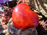 Polished Medium to Large Carnelian Hearts x 6 from Madagascar