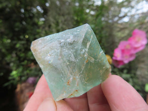 Natural Fluorite Octahedron Crystals x 12 from Riemvasmaak, South Africa