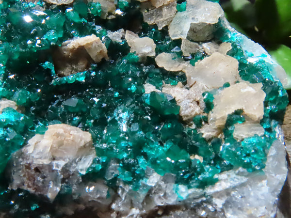 Natural Medium Classic Dioptase & Calcite Specimen x 1 from Ponte De Noire, Congo