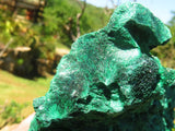 Natural Silky & Botryoidal Malachite Specimens x 2 from Kasompe, Congo