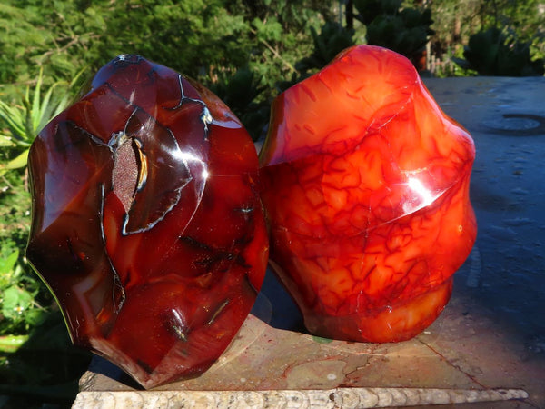 Polished Stunning Carnelian Flame Carvings x 2 from Madagascar