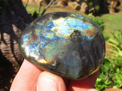 Polished Exquisite XL Ocean Jasper Standing Display piece x 1  from Madagascar