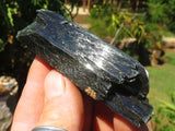 Natural Aegerine Crystals x 35 from Zomba, Malawi