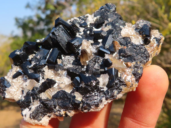 Natural Classic Schorl / Black Tourmaline Specimens (with Feldspar & Quartz) x 7 from Erongo, Namibia