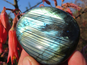 Polished Palm Size Labradorite Crystal Gallets x 12 From Tulear, Madagascar