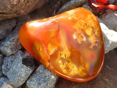Polished Carnelian Freeforms x 12 from Madagascar