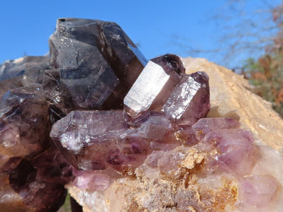 Natural Smokey Amethyst Quartz Crystal Cluster x 1 From New Schwaben, Namibia