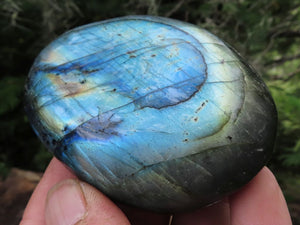 Polished XL Labradorite Gallets x 6 from Tulear, Madagascar