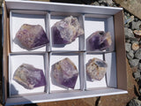Polished Jacaranda Amethyst Quartz Crystals x 6 from Kolomo, Zambia