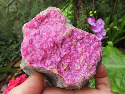 Natural Selected Salrose Specimens x 4 from Kakanda, Congo