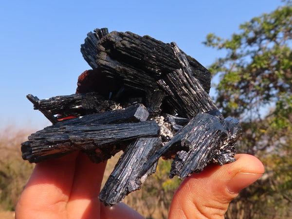 Natural Schorl / Black Tourmaline (Terminated Or Cascading) with Feldspar and Smokey Quartz Specimens x 6 from Erongo, Namibia