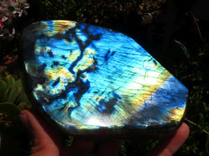 Polished Labradorite Standing Free Forms x 2 from Madagascar