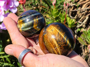 Polished Gold & Variegated Tigers Eye Crystal Balls x 6 From Prieska, South Africa