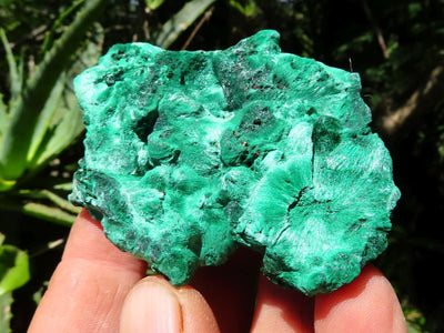Natural Small to Large Silky Malachite Specimens x 9 from Kasompe, Congo