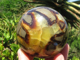 Polished Large Septerye Dragon Spheres x 4 from Mahajanga, Madagascar