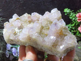 Natural Spirit Amethyst Clusters x 2 from Kwandebele, South Africa - TopRock
