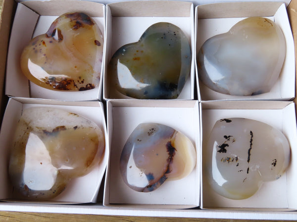 Polished  Medium Dendritic Agate Fugere Hearts x 6 From Madagascar