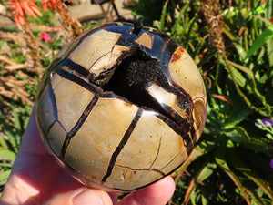 Polished Septeyre Sauvage Ball, Free Form & Standing Eggs x 4 from Mahaganja, Madagascar