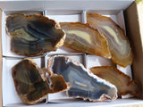 Polished Large Agate Slices x 6 from Madagascar
